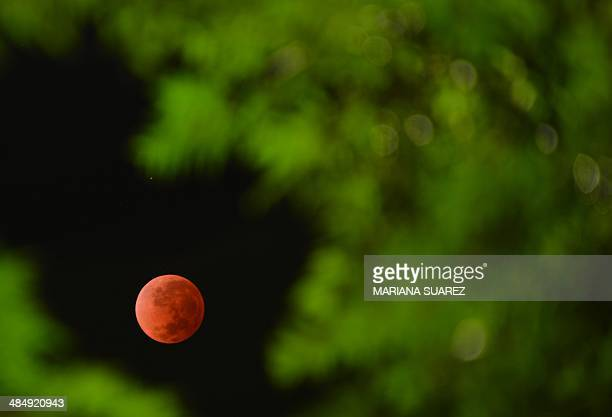 The moon is seen in the time around a total lunar eclipse on April 15 2014 in Montevideo Uruguay People in most of North and South America were able...