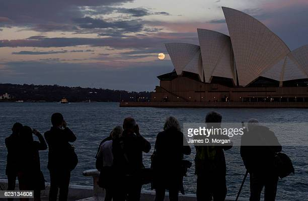 The moon rises behind the Opera House as people photograph it on November 14 2016 in Sydney Australia A super moon occurs when a full moon passes...