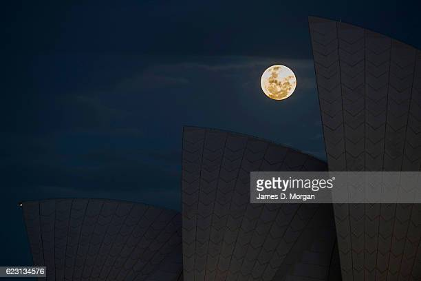 The moon rises behind the Opera House on November 14 2016 in Sydney Australia A super moon occurs when a full moon passes closes to earth than usual...