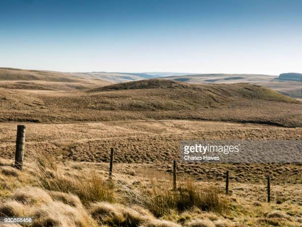 The moor near Garn Gron, Ceredigion. The Cambrian Way, Wales, UK