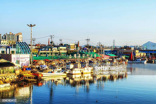 the morning at the small harbor by the fish market - 仁川 ストックフォトと画像