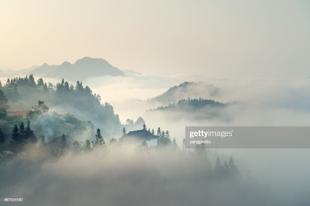 The morning mist : Foto de stock
