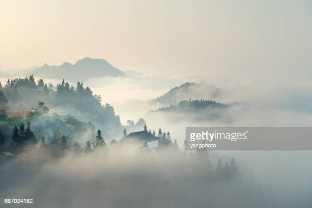 the morning mist - landscape scenery stock photos and pictures
