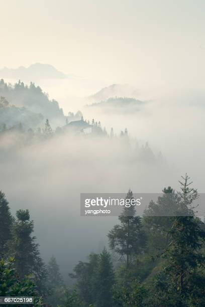 the morning mist - fog stock pictures, royalty-free photos & images