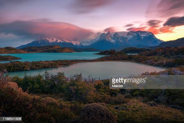 the morning scenery of torres del paine, patagonia, chile - patagonische anden stock-fotos und bilder