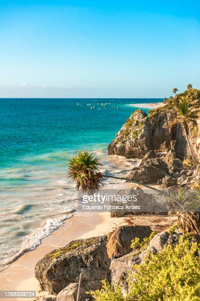 the morning sunlight shining on a deserted beach with cliffs, promontory, rocks palm trees and tropical vegetation, in front of the blue waters of the caribbean sea - mexico stock pictures, royalty-free photos & images
