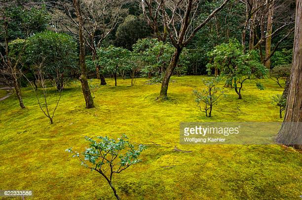 The moss garden part of the garden of the Ginkakuji or Temple of the Silver Pavilion a Zen temple in the Sakyo ward of Kyoto Japan
