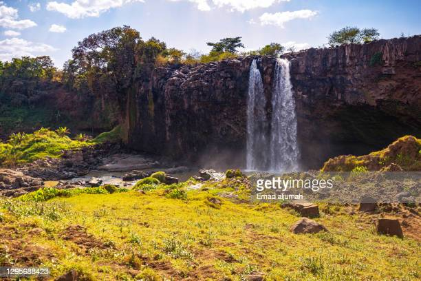 the most dramatic blue nile falls (tis abay), bahar dar, ethiopia - horn of africa stock pictures, royalty-free photos & images