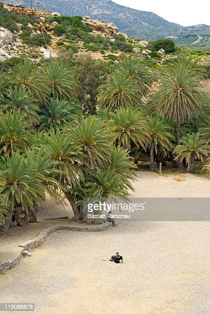 The most famous palm tree forest and the bay of Vai with tourists enjoying sunbathe in the Mediterranean Sea on April 25 2010 in Vai Greece