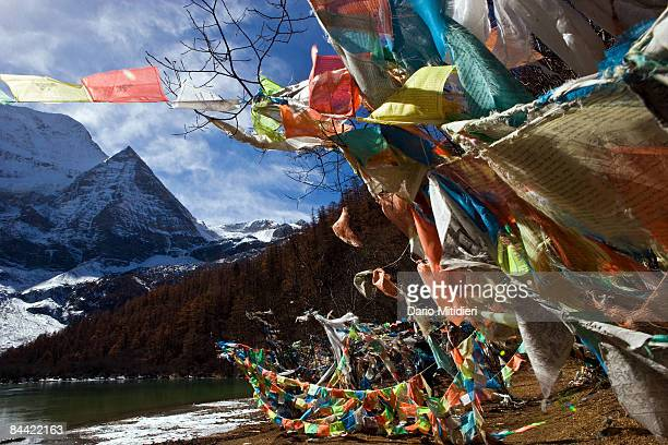 The mountain Chenrezi the deity of compassion one of three holy mountains for Buddhists overlooking the green Pearl Lake in Yading a reserve in...