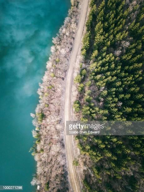 the mountain lake between the trees - rumänien stock-fotos und bilder