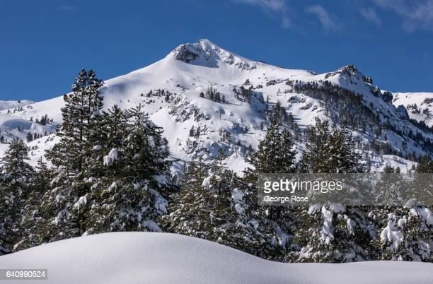 The mountains and trees along Highway 50 are covered in snow as viewed on January 28 near South Lake Tahoe California The sixyear drought in...