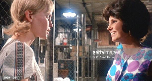 The movie Rosemary's Baby written for the screen and directed by Roman Polanski from the novel by Ira Levin Seen here from left Mia Farrow as...