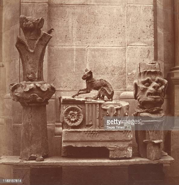The Mummifying Cat circa 1862 Albumen silver print from glass negative Mount 19 13/16 Ñ 9 15/16 inches Photographs Charles Marville