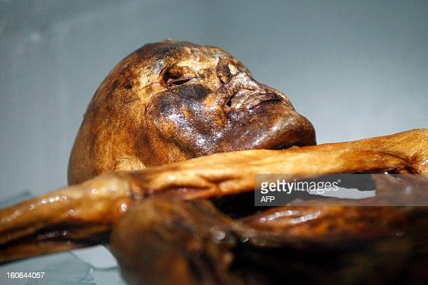 The mummy of an iceman named Otzi, discovered on 1991 in the Italian Schnal Valley glacier, is displayed at the Archaeological Museum of Bolzano on...