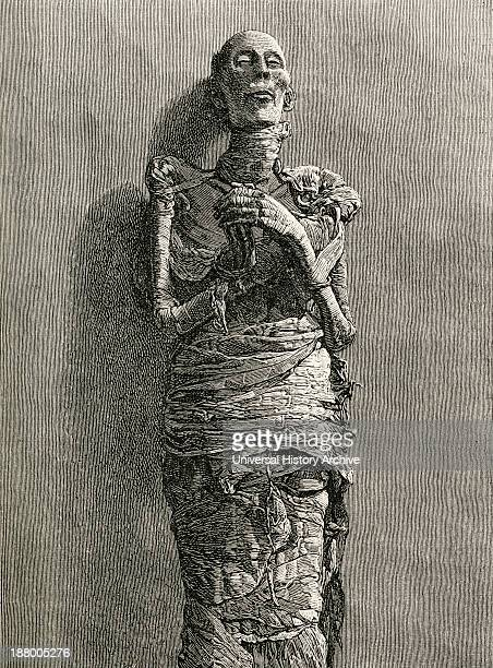 The Mummy Of Ramesses Ii Reigned 1279 Bc To 1213 Bc Aka Ramesses The Great Third Egyptian Pharaoh Of The Nineteenth Dynasty From The World's...