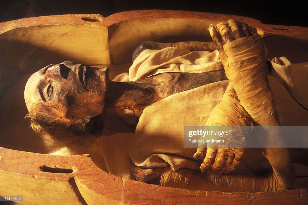 Egypt's Mummies : News Photo