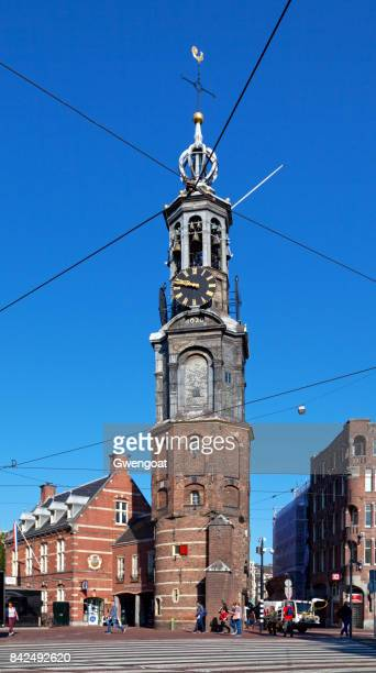 the munttoren in amsterdam - gwengoat stock pictures, royalty-free photos & images