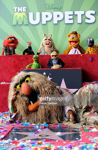 The Muppets who were honored with 2466th Star on the Hollywood Walk of Fame in front of the El Capitan Theatre on March 20 2012 in Hollywood...