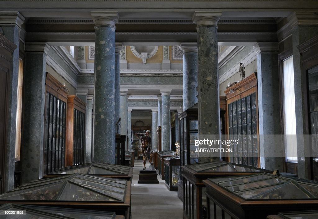 Museum Of Anatomy, Faculty Of Medecine, Montpellier, Herault ...