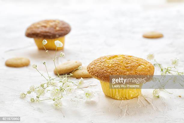 The mushroom shaped cakes decorated with baby breath