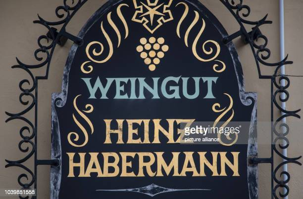 The name HeinzHabermann on a sign outside a vineyard in Kallstadt Germany 07 February 2017 The grandfather of the current USpresident Donald Trump...