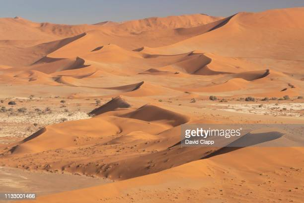 the namib desert from the air, sossusvlei, namibia, africa - namib naukluft national park stock pictures, royalty-free photos & images