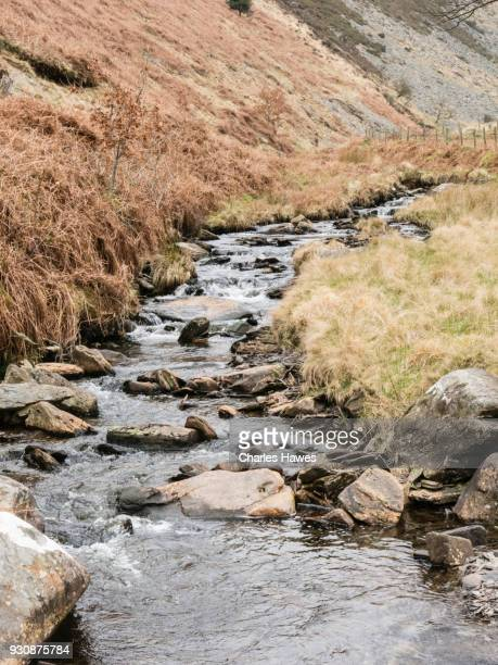 The Nant Egnant stream, Ceredigion. The Cambrian Way, Wales, UK