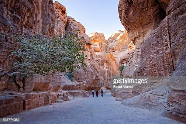 The narrow passage (Siq) that leads to Petra