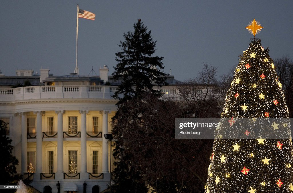 The National Christmas Tree On The Ellipse : News Photo