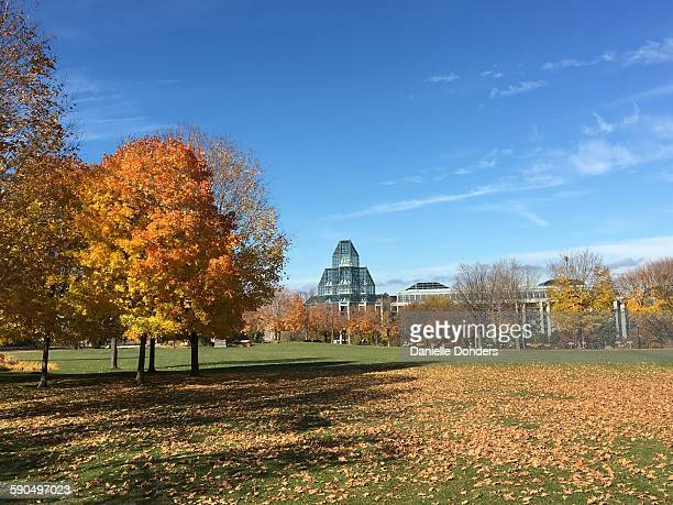 The National Gallery of Canada as seen across the leadstrewn lawn of Majors Hill Park in Ottawa Canada