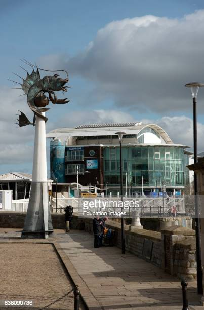 The National Marine Aquarium at the Barbican in Plymouth South Devon England UK