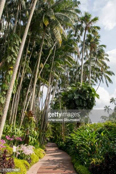 The National Orchid Garden on August 18 2019 in Singapore The National Orchid Garden is located in the Singapore Botanic Gardens opened on 20 October...