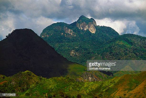 the national parks feed water to the panama canal. - trinidad and tobago stock pictures, royalty-free photos & images