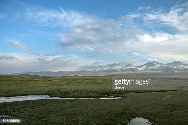 the natural scenery of the northern xinjiang , china , asia - hoch position stock-fotos und bilder