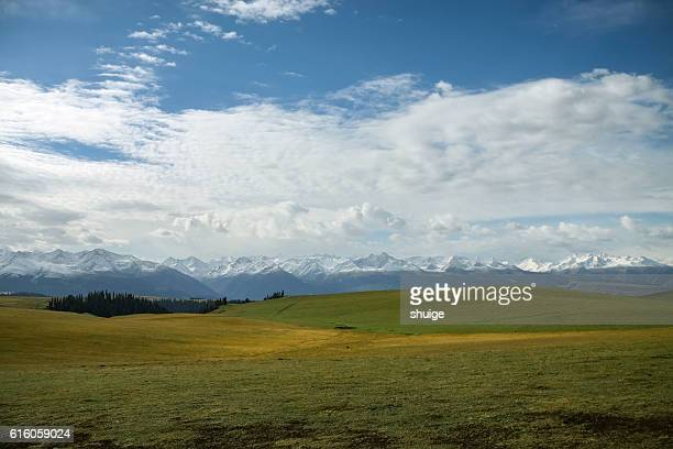 The natural scenery of the northern xinjiang , China , Asia