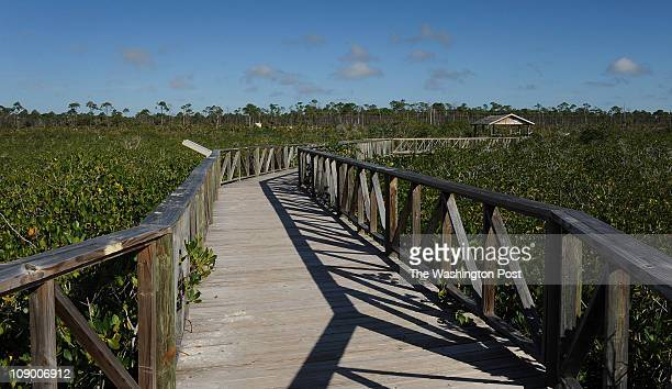 The nature walk at Lucayan National Park on February 6 2011 in Freeport Bahamas