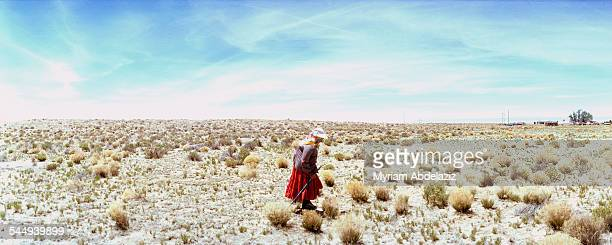 The Navajo Reservation