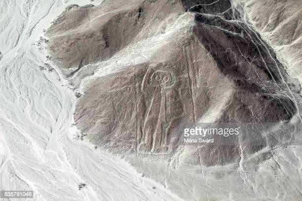 "the nazca lines from air - the ""astronauta/astronaut"" figure - nazca lines stock pictures, royalty-free photos & images"