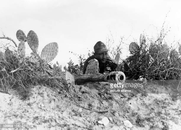 The Nazi propaganda picture shows a soldier of the German Wehrmacht next to an antitank gun in North Africa The photo was taken in January 1943 Photo...