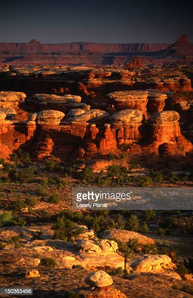 The Needles area, Canyonlands National Park.