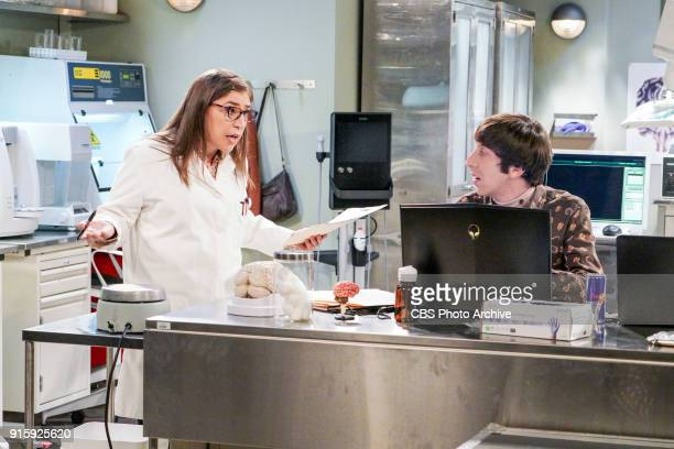 'The Neonatal Nomenclature' Pictured Amy Farrah Fowler and Howard Wolowitz When Bernadette won't go into labor all her friends try different tactics...