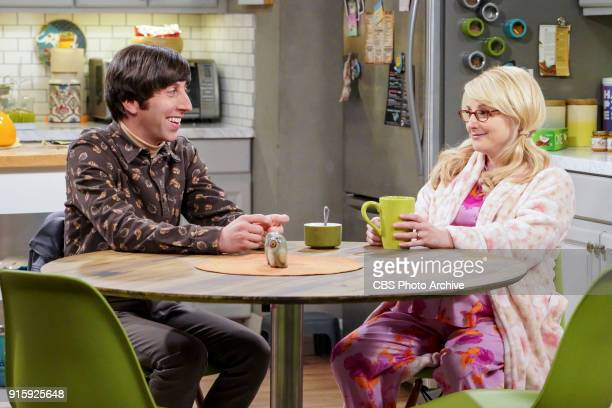 'The Neonatal Nomenclature' Pictured Howard Wolowitz and Bernadette When Bernadette won't go into labor all her friends try different tactics to get...