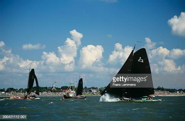 The Netherlands, Friesland,   Staveren, Skutsjesilen regatta