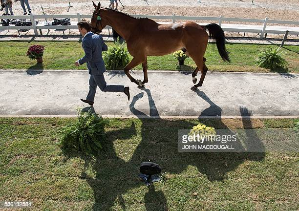 The Netherlands Theo van de Velde leads Zindane to a trot during the first horse inspection of the Equestrian's Eventing phase during the 2016 Rio...