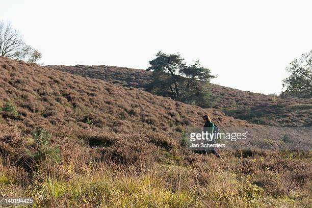 the netherlands, veluwezoom, posbank, hiker in countryside - posbank ストックフォトと画像