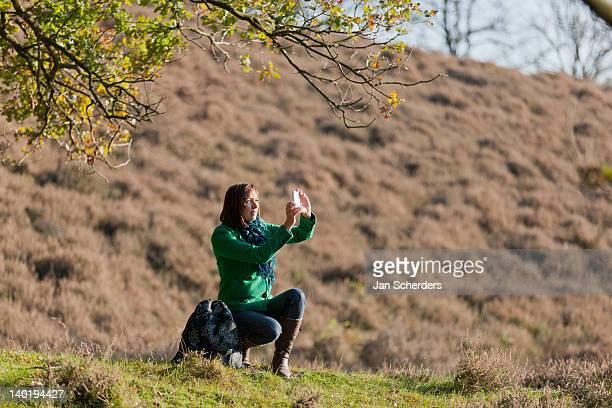 the netherlands, veluwezoom, posbank, hiker using camera in countryside - posbank ストックフォトと画像