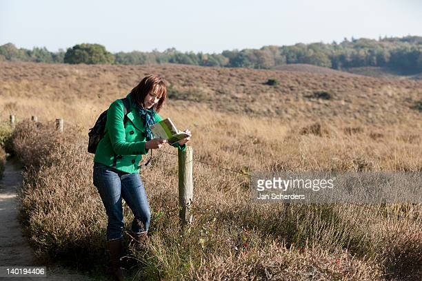 the netherlands, veluwezoom, posbank, woman reading guidebook in countryside - posbank ストックフォトと画像