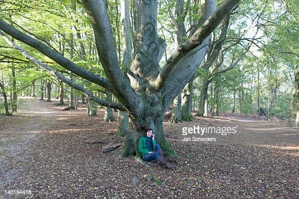 the netherlands, veluwezoom, posbank, woman sitting under tree in park - posbank ストックフォトと画像