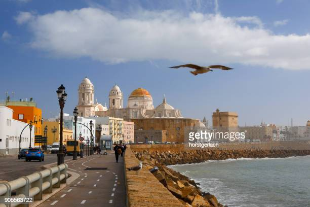 The New Cathedral and waterfront at Cadiz, Spain